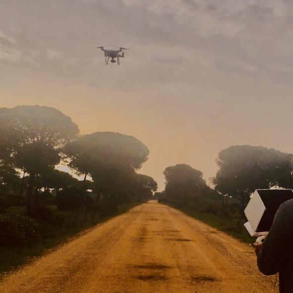 Fotografía aérea drone camino